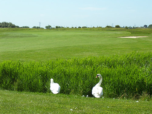 Lydd Golf Club & Driving Range Limtied